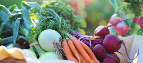 Fresh produce – alternative provisions for church workers